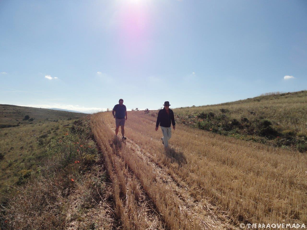 Jornada de senderismo activo Cerco de Escipion