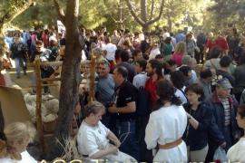 Público visitando el poblado celtibérico de