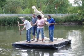 Cuerpo de pontoneros de la ACC Tierraquemada en una prueba navegabilidad de nuestra mítica embarcación ribereña.. Tomás Sanz. Rio Tera (Garray)
